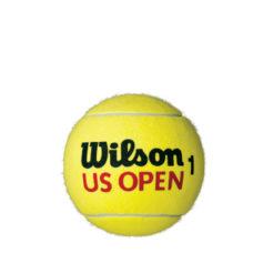 Balles de Tennis géante 6inch Wilson Jaune